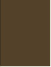 Bitrad - Drewno sosnowe impregnowane ciśnieniowo